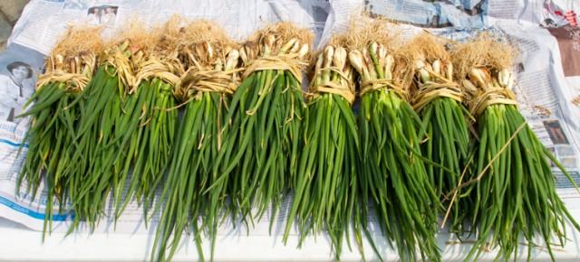 2014년 5월 11일 (일), 마르쉐@혜화동 '어린이' 출점 농부팀을 소개합니다!!!